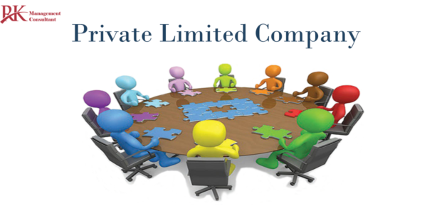 What is meaning of private limited company?