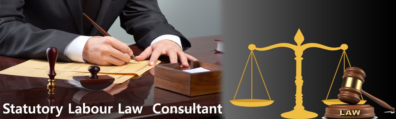 Labour Law consultant